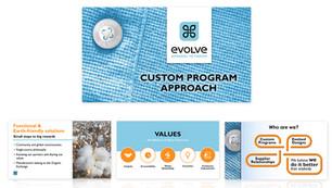 portfolio pagesevolve ppt.jpg