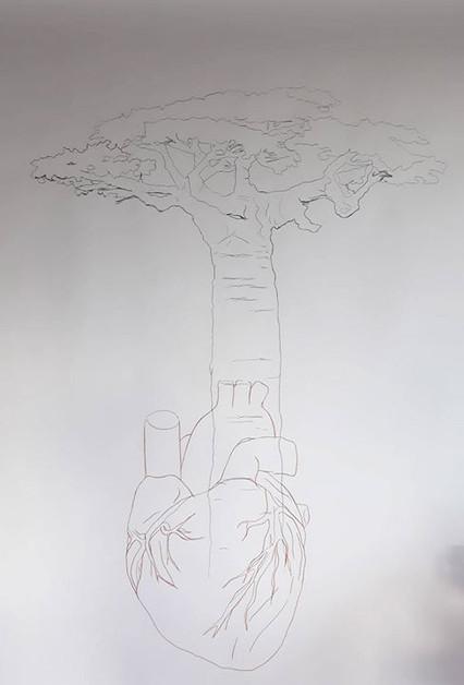 Baobab mon amour 2
