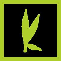 kannibox monthly cannabis subscription