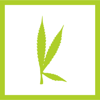 kannibox monthly cannabis box subscription