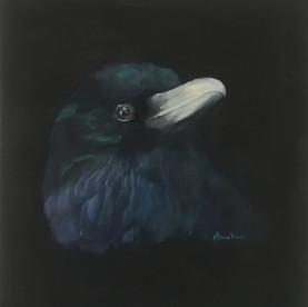 Raven V