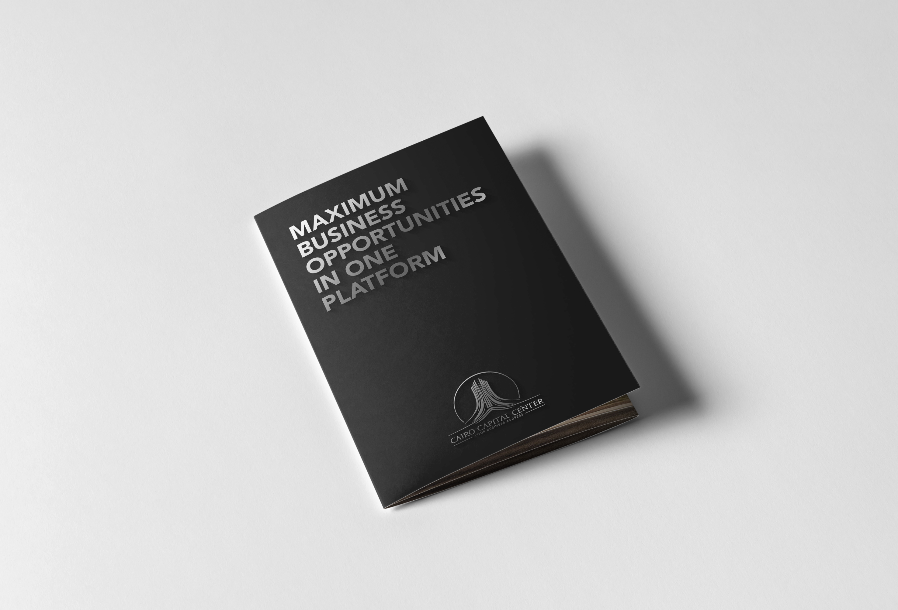 02_Tri-Fold A5 Brochure_06