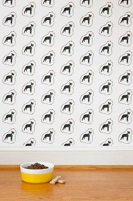 #21 Rainbow Boston Terrier-Mira Jean Wal