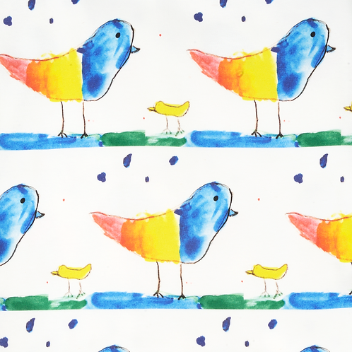 Rainbow Birds Fabric Swatch