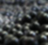 porzeczka_czarna_m (1)_2x.png
