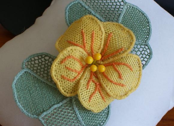 Kit Fleur de capucine