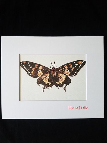 Pyrography on Paper Moth Art Print
