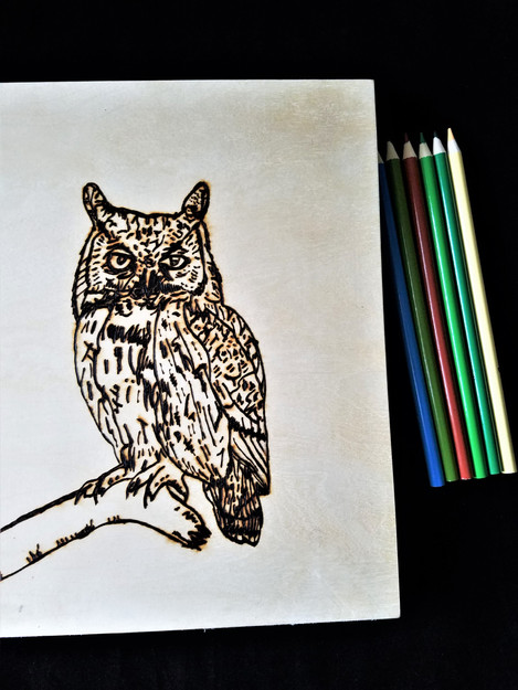 Nature Pyrography Art Projects