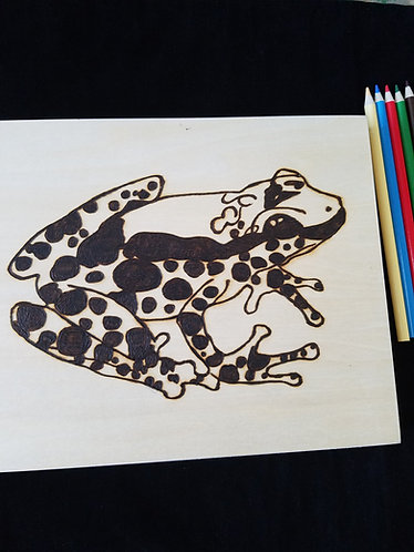 Nature Pyrography Art Kit (Frog)
