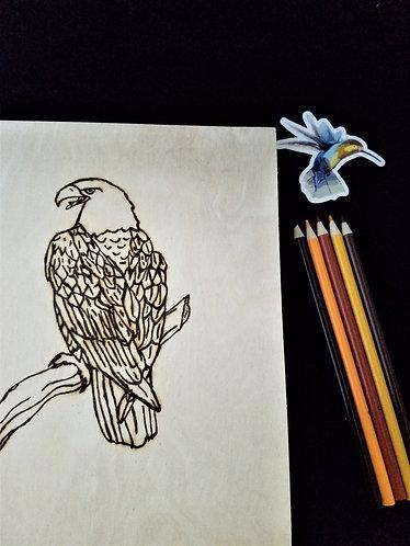 Eagle Pyrography Art Kit