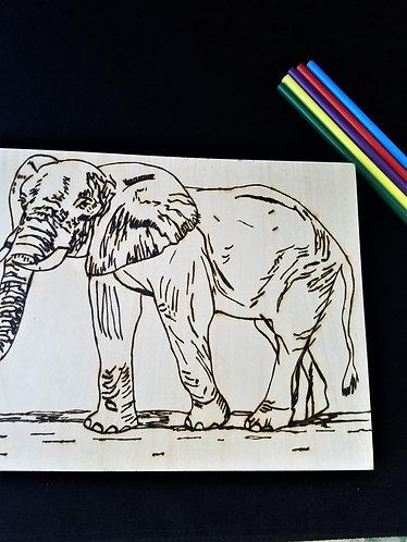 Nature Pyrography Art Kit (Elephant)
