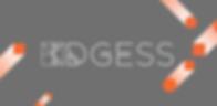 DGESS Website Display copy.png