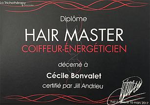 Coiffeur énergéticien Hair Master