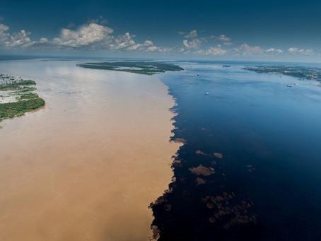 Fleuve Amazonas