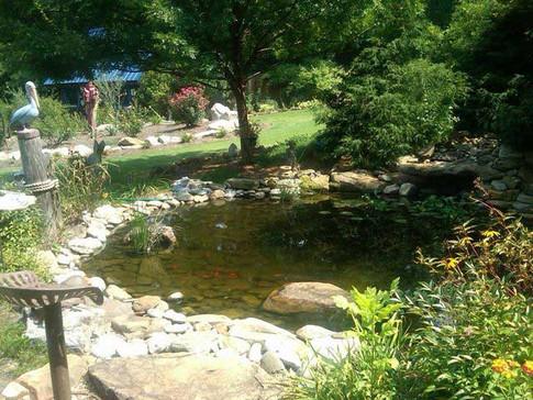 Rock-pond.jpg