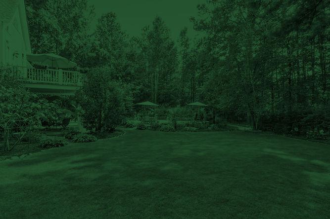 Landscaping-Care-Green.jpg