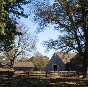 Daytime Barnyard