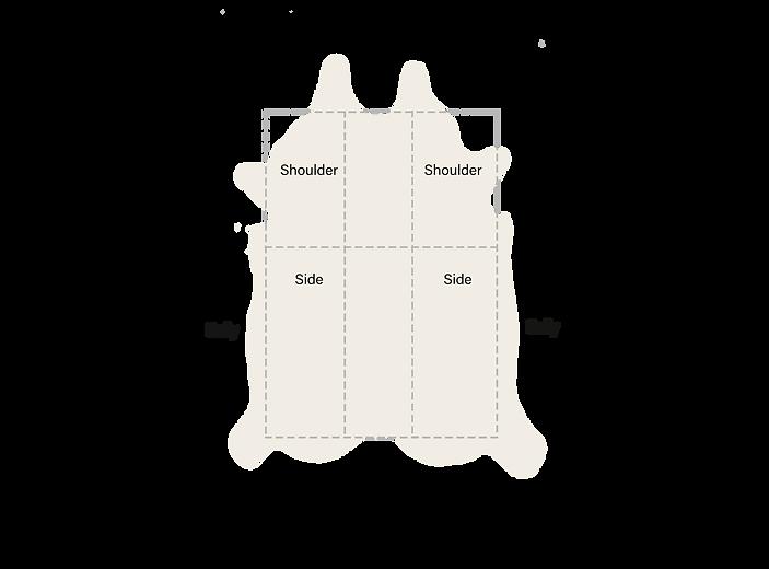 cowhide diagram.png