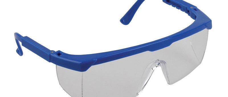 Blue Frame - 51113
