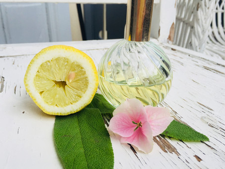 DIY after sun, Hydrolate, OUI CHÉRIE, Sonnenschutz, wirksamer  Gelsenschreck - Sommersets im Angebot