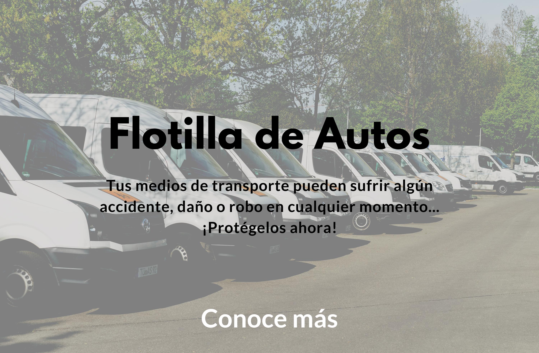 Flotilla de Autos