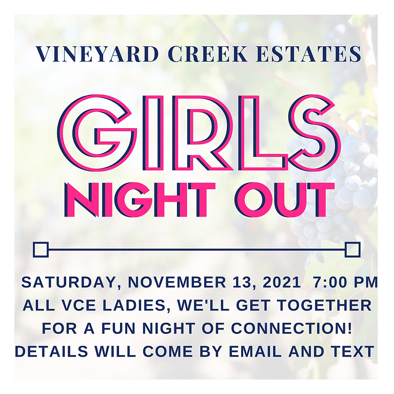 VCE Girls' Night Out