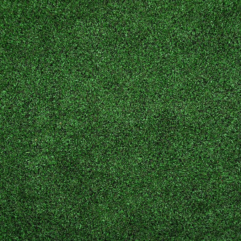 Announcement - 2021 Lawn of the Month Competition