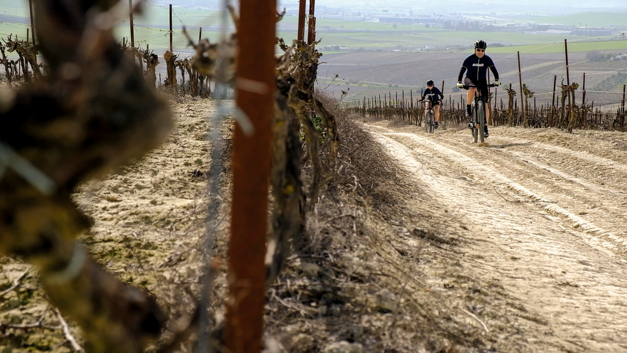Sherry bike previo_6.jpg