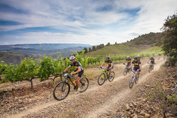 article-mountain-bike-priorat-5836baa3c6