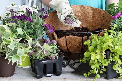 DIY Hanging Basket Kit
