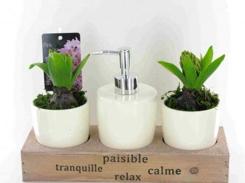Hyacinth Handwash Set