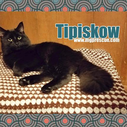 Tipiskow.jpg