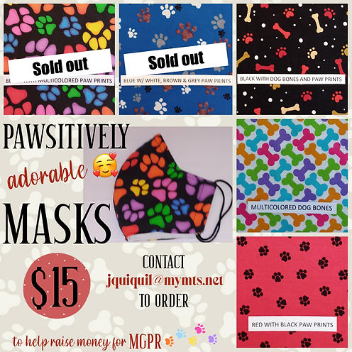 Pawsitively Masks Update.jpg