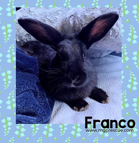 Franco.jpg
