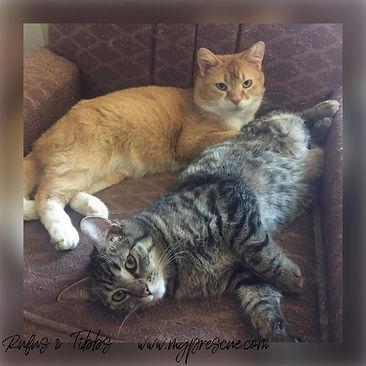 Rufus & Tibbs.jpg
