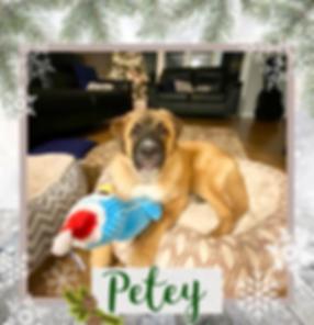 Petey.png