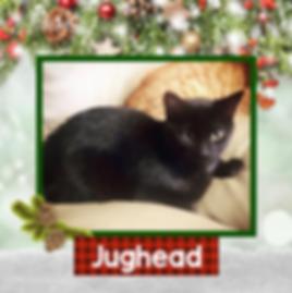 Jughead.png