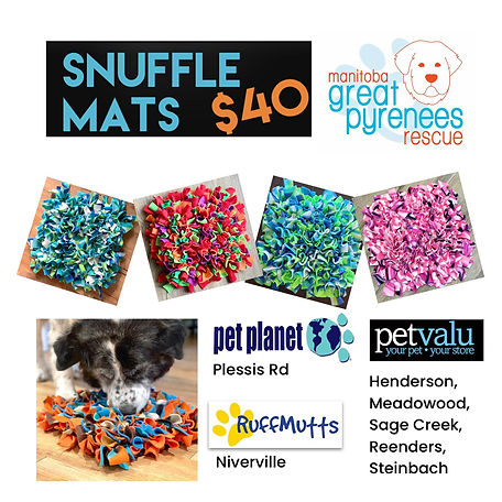 Snuffle Matts.jpg