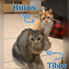 RufusandTibbs.jpg