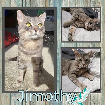 Jimothy.png