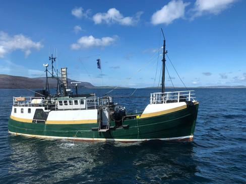 Scapa-Boat-3.jpg