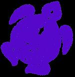 turtle-full_110524V4.png