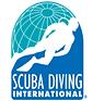 SDI Logo 2.png