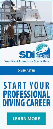 SDI-Divemaster-Vertical-Banner-500x1200