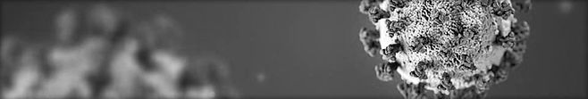 covid 19 black and white banner.jpg