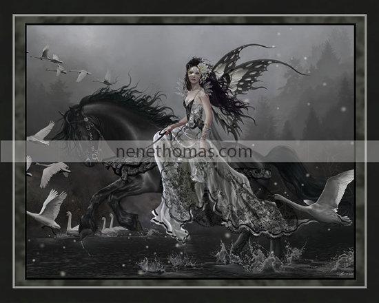 Lamentations of Swans 8 x 10 Print