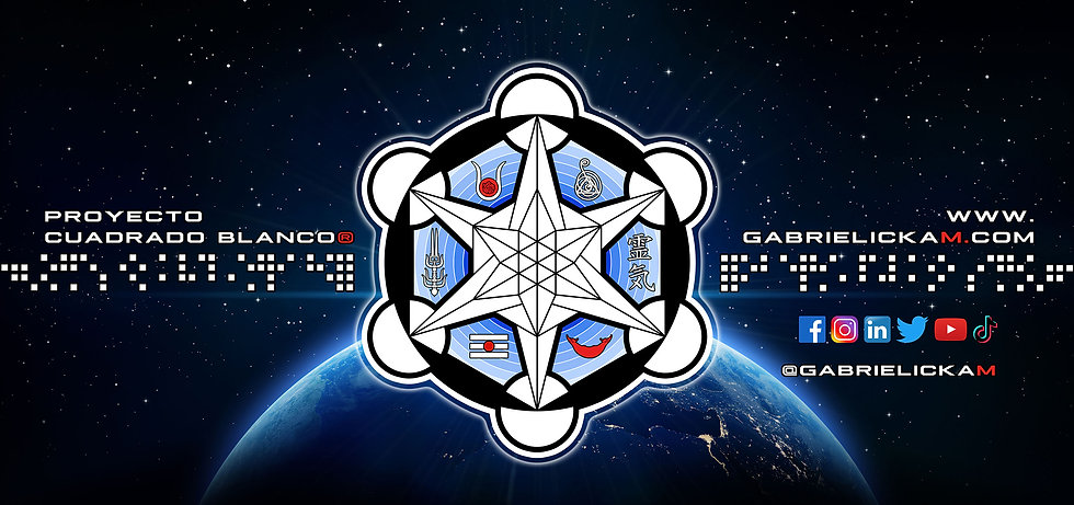 □ WSP □ LOGO Header SPACE 02 WEB.jpg