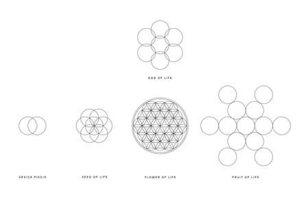 W2P _Sacred Geometry Studies 002.jpg