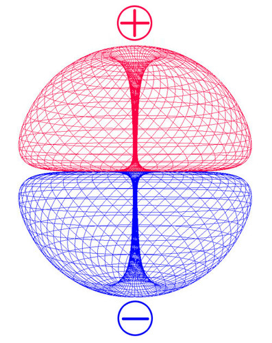 duble_torus_side_web.jpg