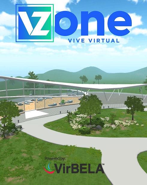 VZONE%201_edited.jpg